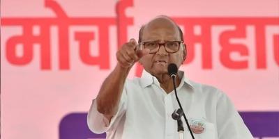 NCP प्रमुख शरद पवार की सचिन को जबर्दस्त नसीहत, अन्य क्षेत्रों से संबंधित मुद्दों पर सावधानी से हिट करें