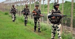 अनूपगढ़ क्षेत्र में बीएसएफ ने पाक घुसपैठिये को मार गिराया